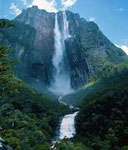 Водопад сонник