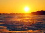 Восход сонник