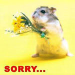 Извинение сонник