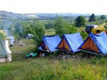 Лагерь сонник