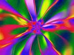Цвет сонник