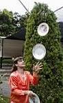 жонглер сонник