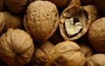 Грецкий орех сонник