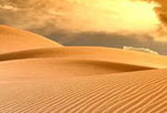 Пустыня сонник