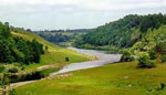 Река сонник