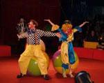 Цирк сонник