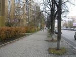 Тротуар сонник